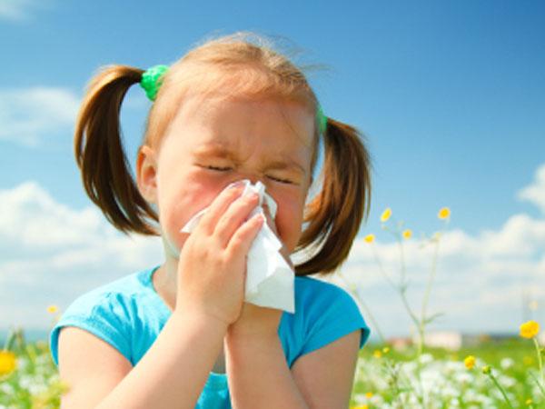 anak alergi